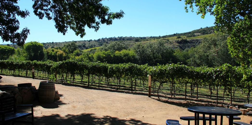 14_Arizona_Page Springs Vineyards_c_BrigitteBonder
