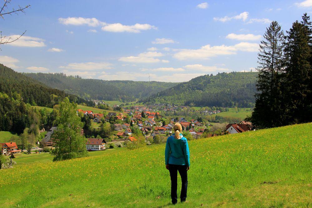 Baiersbronn Wandern