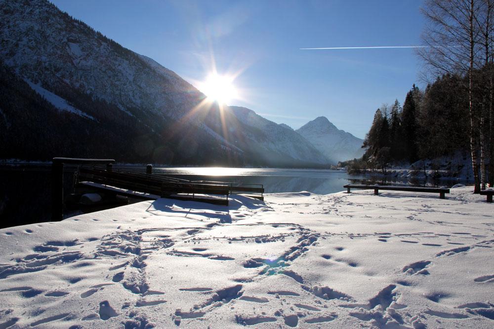 Husky_Ammergauer_Alpen