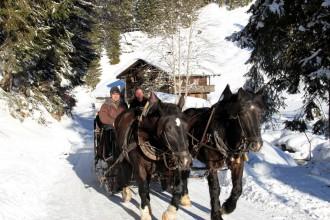 Leogang Schlittenfahrt Pferd Kutsche