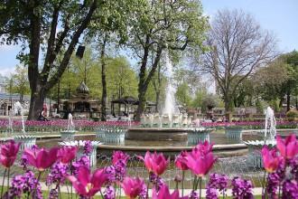 Kopenhagen Tivoli Tulpen