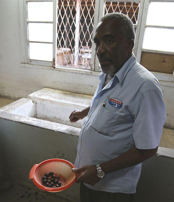 Grenada Muskatnuss Nutmeg Fabrik