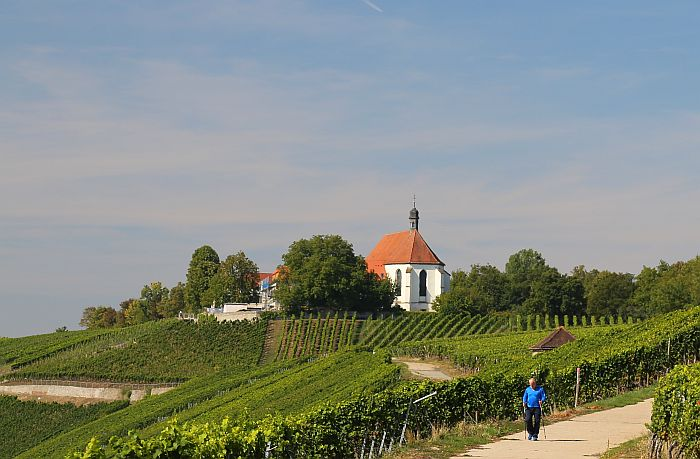Franken Vogelsburg Panoramaweg