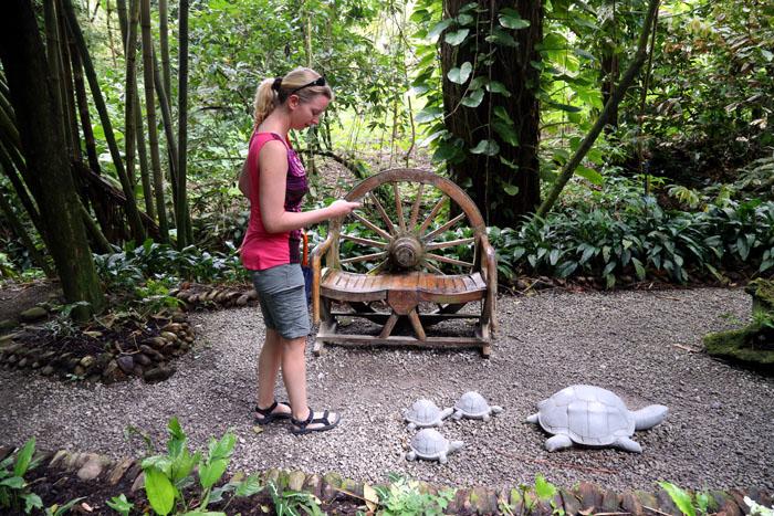 St. Lucia_Auf der Jagd nach Fotomotiven