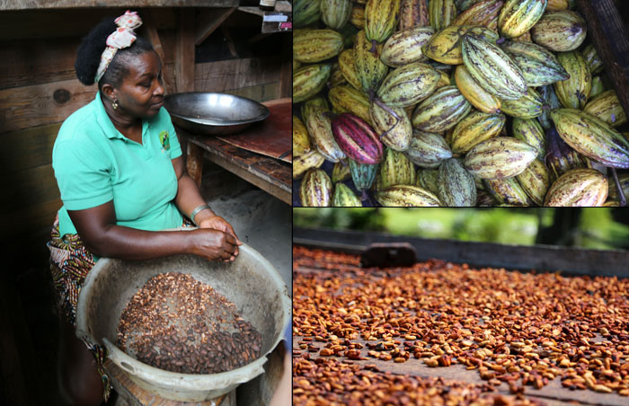 St. Lucia_Kakaoröstung