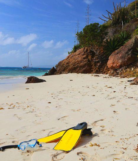 Tobago Cays Strand Beach Schnorcheln Snorkeling