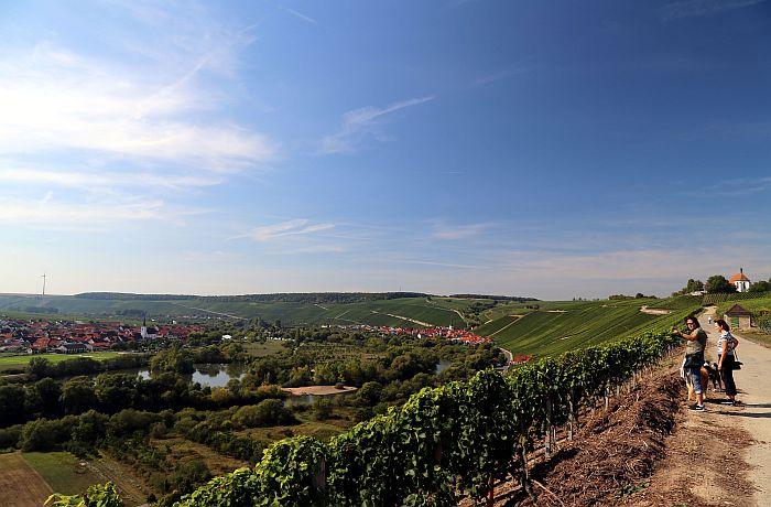 Franken Wanderung zur Vogelsburg Fränkisches Weinland Wein
