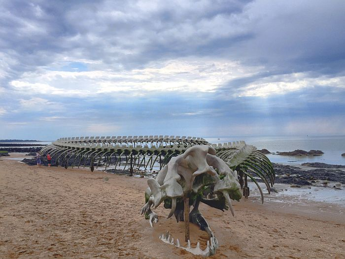 Das letzte Kunstwerk - Die Ozeanschlange am Atlantik