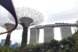 Beitragsbild Singapur