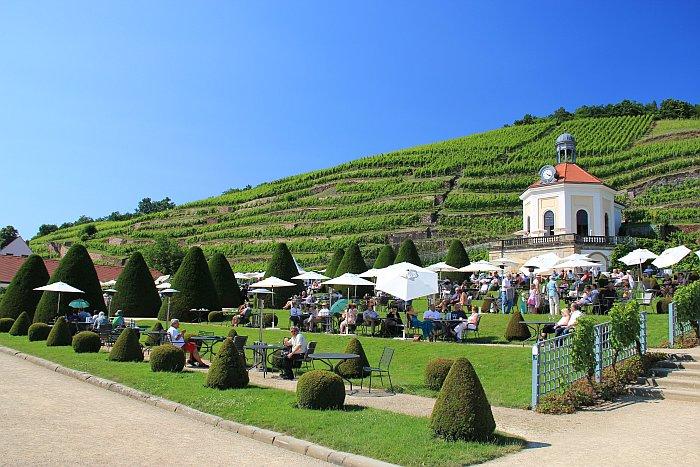 Dresden Weinprobe Schloss Wackerbarth