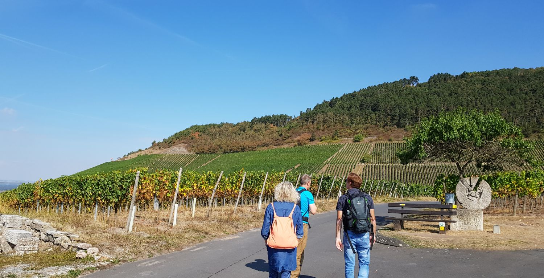 Iphofen Kurzurlaub Wein Julius-Echter-Berg Franken Weinland