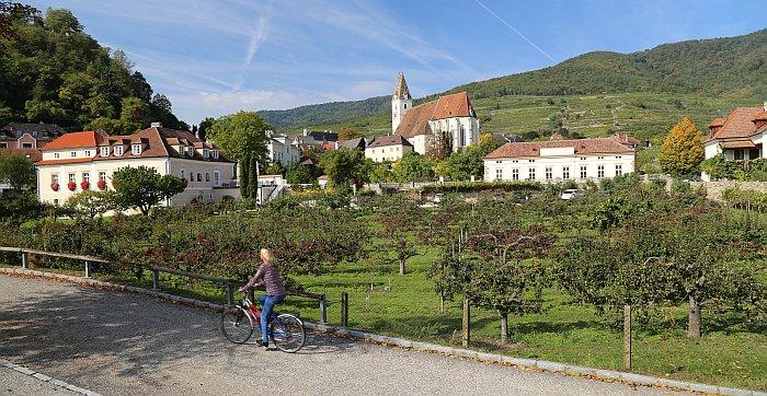 Niederösterreich Wachau Donauradweg Weinberge