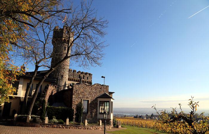 Burg Schwarzenstein Rheingau
