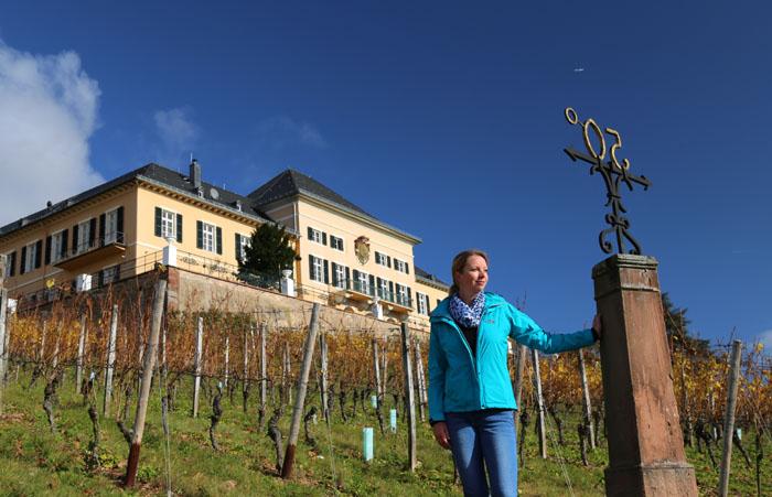 Rheingau Wanderung zum Schloss Johannisberg