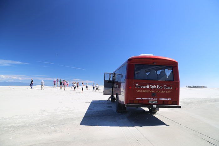 Neuseeland Golden bay Farewell Spit Tour am Strand