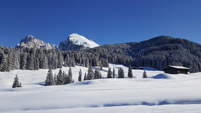 http://reiseblog-kurzurlaub.de/roter-hahn-skiurlaub-auf-dem-bauernhof.html