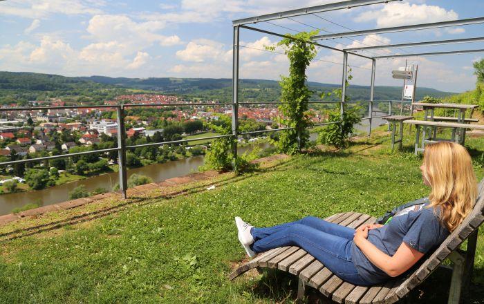 Churfranken Franken Wein Rotwein Wanderweg Miltenberg