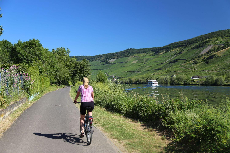 Auf dem Moselradweg geht es steigungsarm am Fluss entlang nach Traben-Trarbach